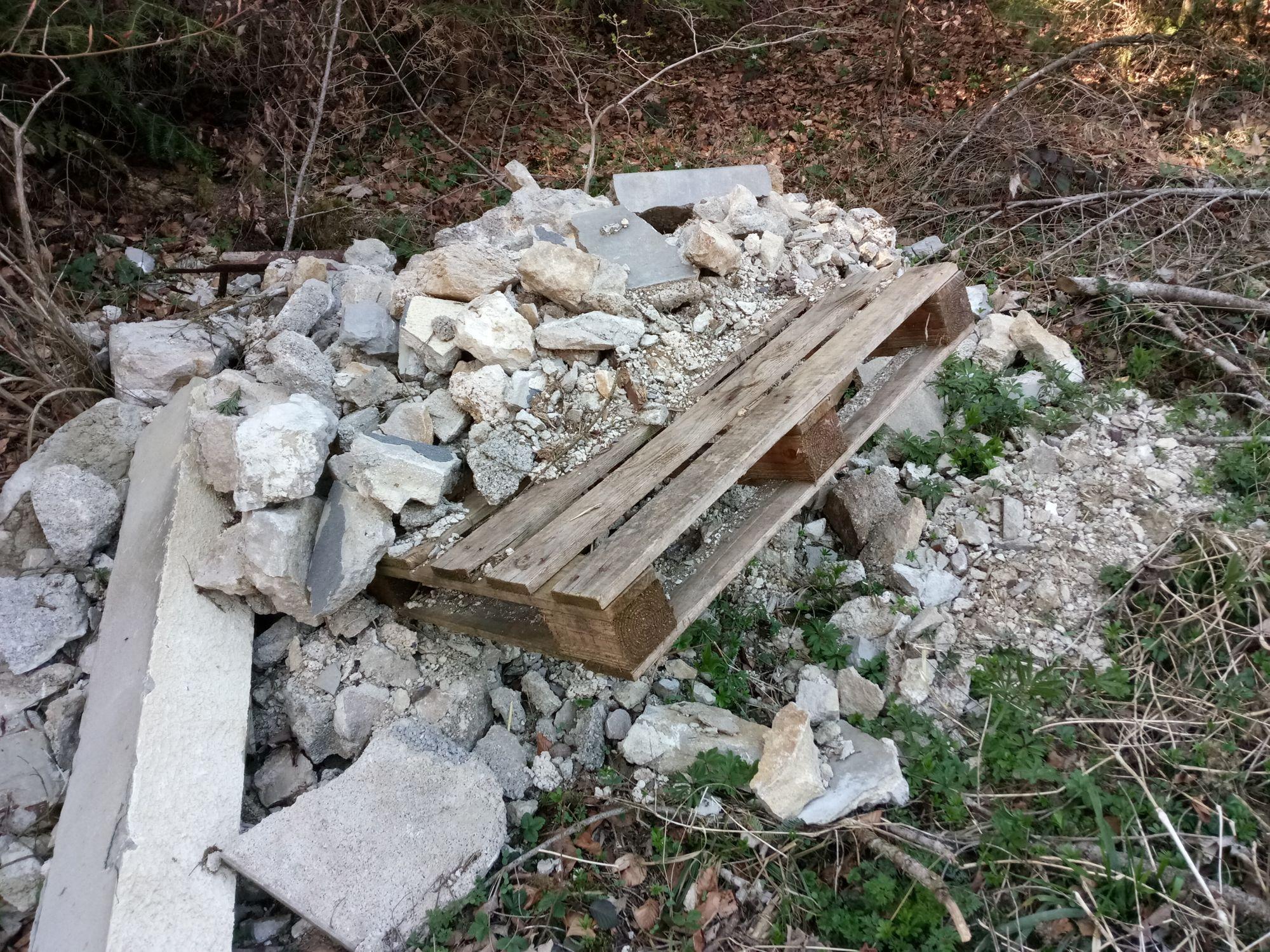 Les dépôts de déchets en forêt résistent au confinement