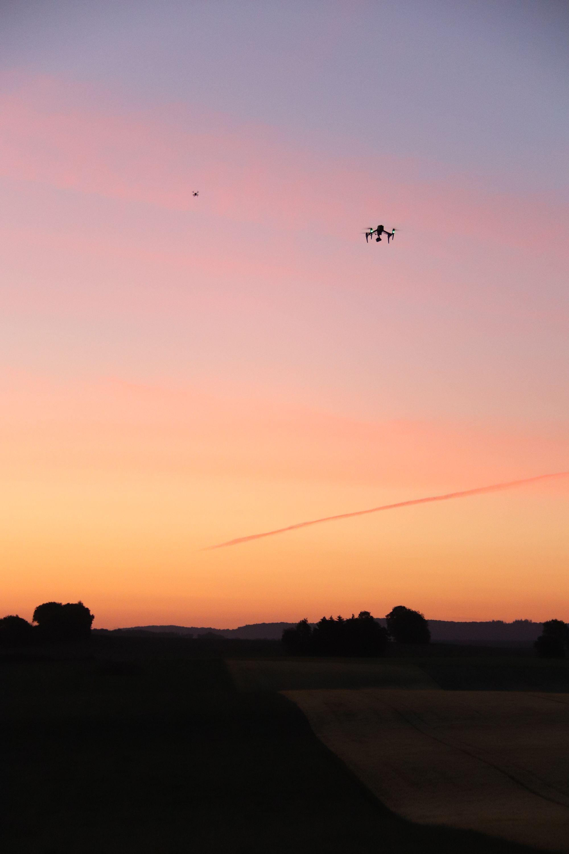Osse. Opération sauvetage de faons grâce à des drones