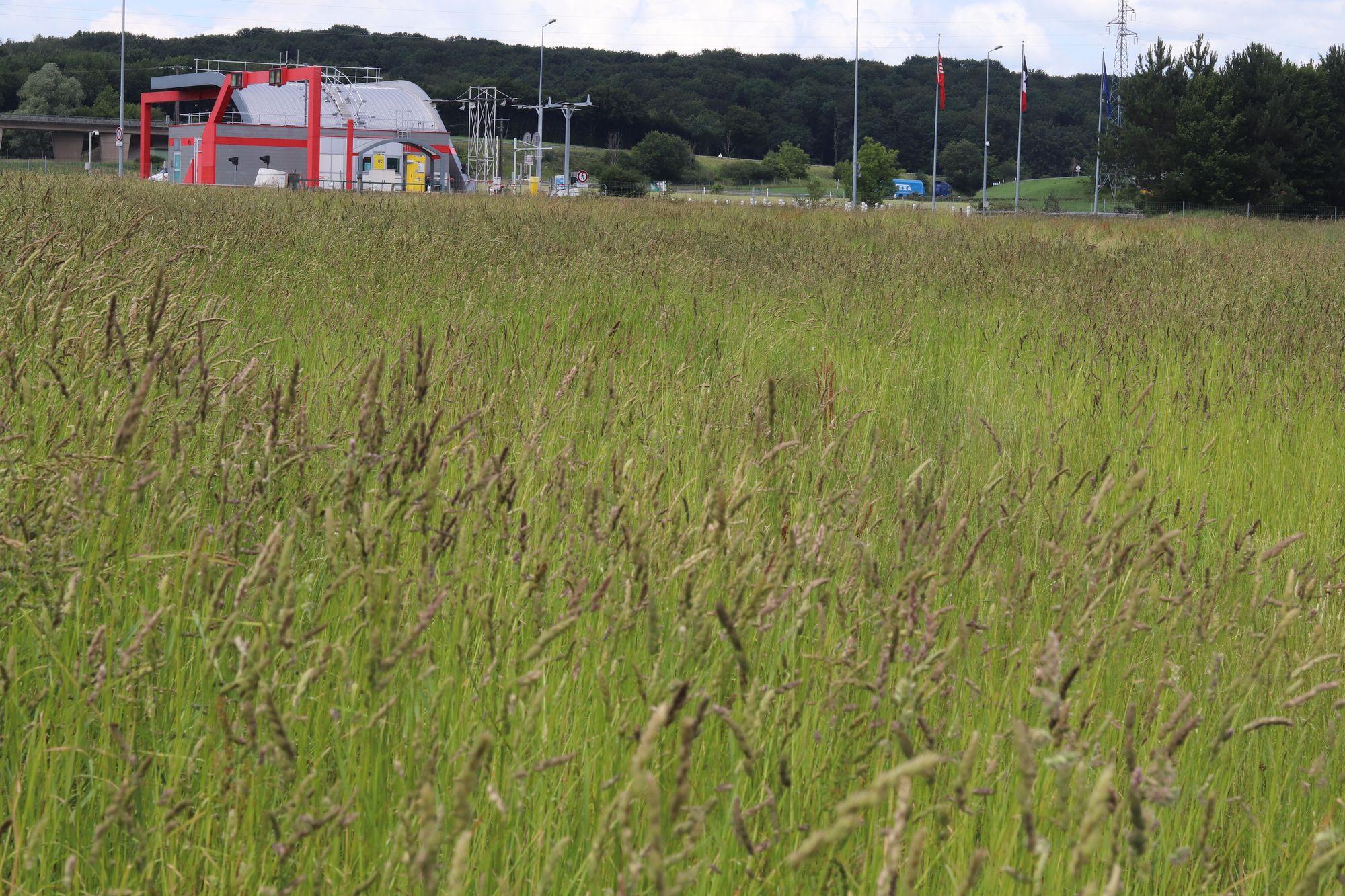 Chaudefontaine. Que fera GBM des 70 hectares de terres agricoles achetés il y a 10 ans ?